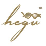 Hegu …aby piękno pozostało pięknem…